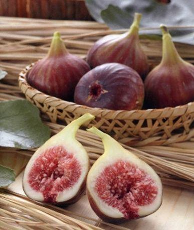 西播磨の果物が旬を迎えます