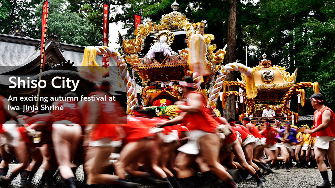 Shiso City:An exciting autumn festival at Iwa-jinja Shrine